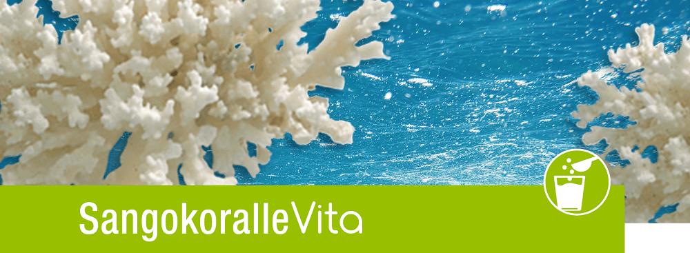 Sangokoralle - Korallenpulver (Calcium)