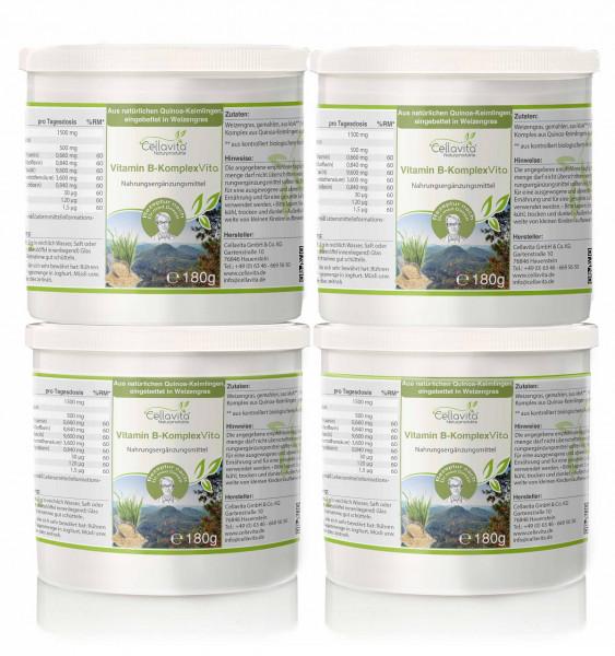 Vitamin B-Komplex Vita -Vorteilspaket - 4x180g | Rezeptur nach Dr. med. M. Doepp