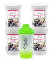 Aminosäuren Vita (natürliche Aminosäuren & Proteine) Vorteilspaket 4x300g