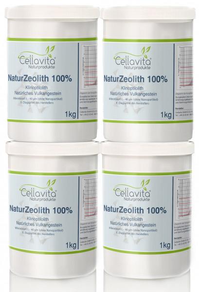 Natur-Zeolith (100%) - Klinoptilolith Vorteilspaket 4 x 1kg