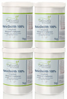 Natur-Zeolith (100%) - Klinoptilolith Vorsorgepaket 4 x 1kg