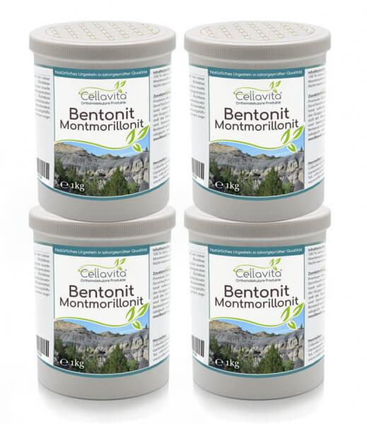 Premium Bentonit Montmorillonit 4x 1000g Vorteilspaket