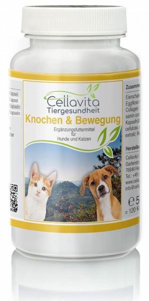 Knochen & Bewegung - 120 Kapseln für Hunde & Katzen