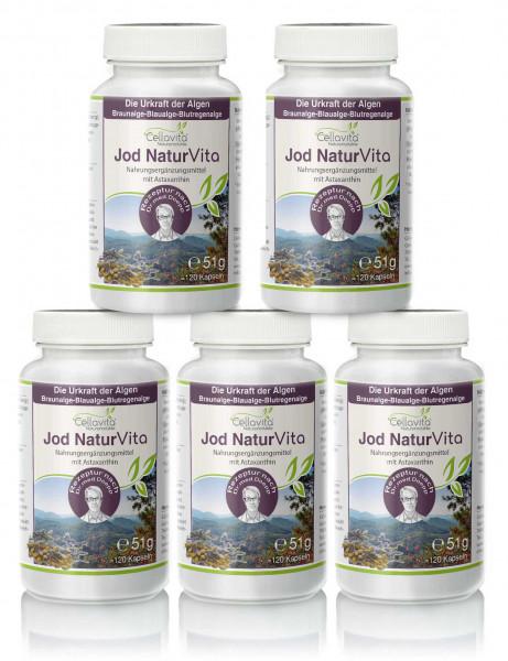 Jod Natur Vita - Vorsorgepaket - 5 x 120 Kapseln | Rezeptur nach Dr. med. M. Doepp