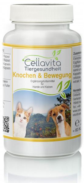 Knochen & Bewegung - 60 Kapseln für Hunde & Katzen