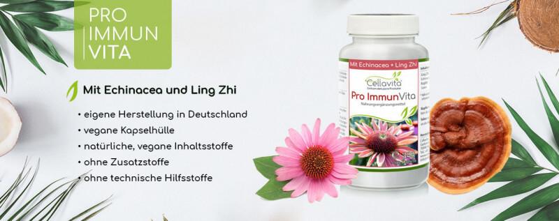 https://www.cellavita.de/gesundheit/nahrungsergaenzung/pro-immun-vita/