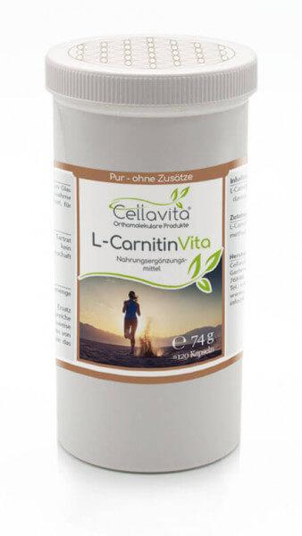 L-Carnitin Vita 120 Kapseln